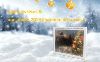 JOYEUSES FÊTES & UNE ANNÉE 2019 ILLUMINÉE DE SUCCÈS!